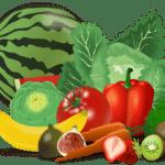 Mon chien peut-il manger des fruits et des légumes ?
