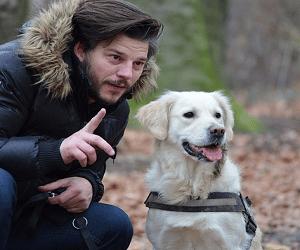 éducation du chien