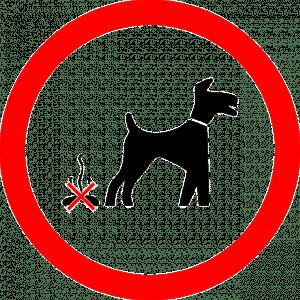 interdiction que le chien fasse caca