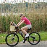 un vélo avec un chien dans un panier