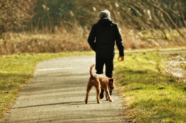 un homme promenant son chien