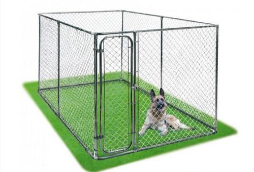 Chenil pour chien sans toit