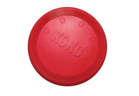 Frisbee Kong de taille L