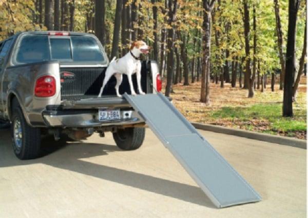 Canis-Rampe pour chien en aluminium et plastique