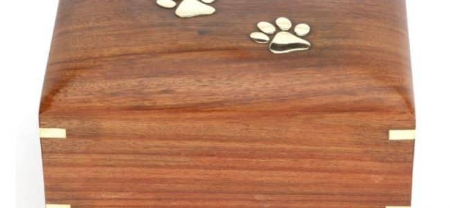 une urne en bois pour chien