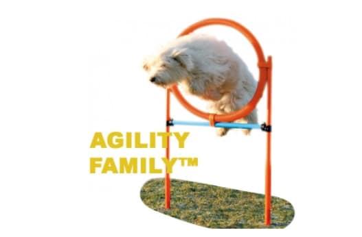 Cerceau Agility pour les sports canins