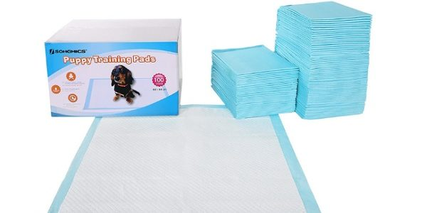 des tapis éducateurs pour chien
