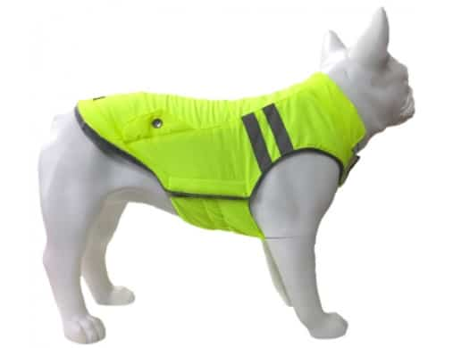 Doudoune pour chien flashy