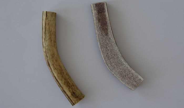 bois de cerf fendu